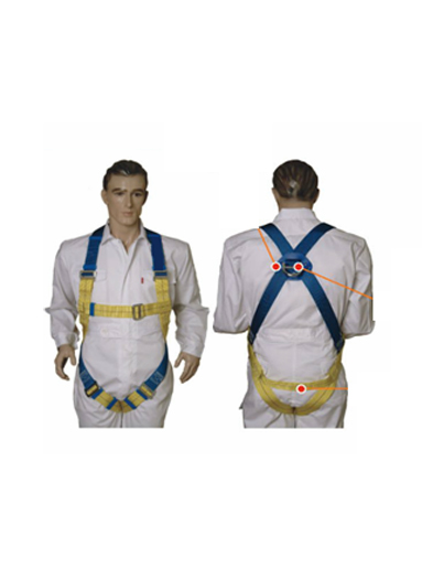 (PROFESSIONAL ) FULL BODY HARNESS